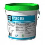 Laticrete HYDRO BAN Liquid Waterproofing Membrane